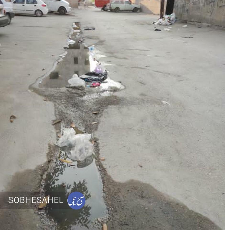 گلایه یک شهروند از رهاسازی زبالهها در خیابان و کمبود سطل زباله